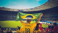 stade supporter brésil